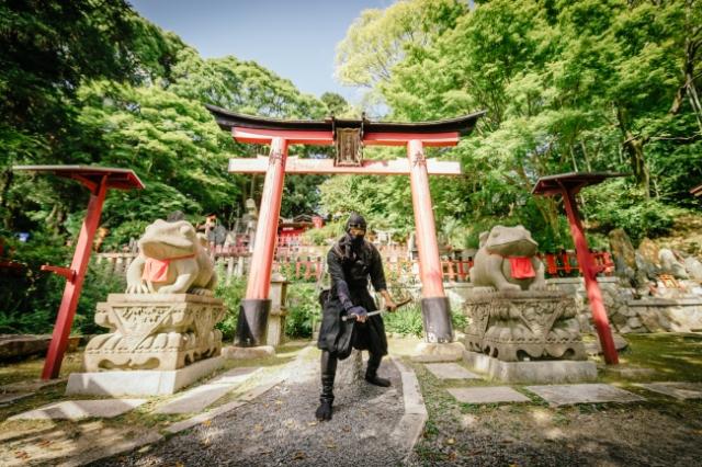 La Kyoto Ninja Run renderà il vostro viaggio ancora più entusiasmante! thumbnail