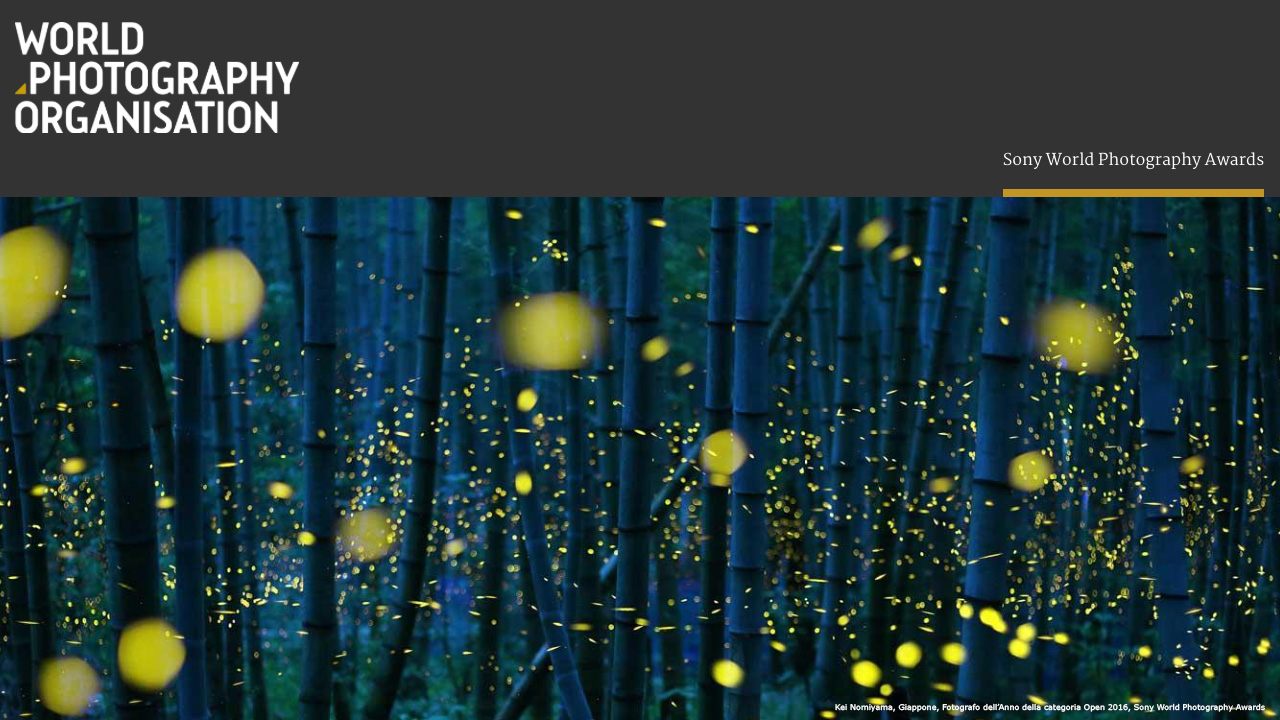 Sony World Photography Awards 2017: ecco i vincitori del concorso thumbnail