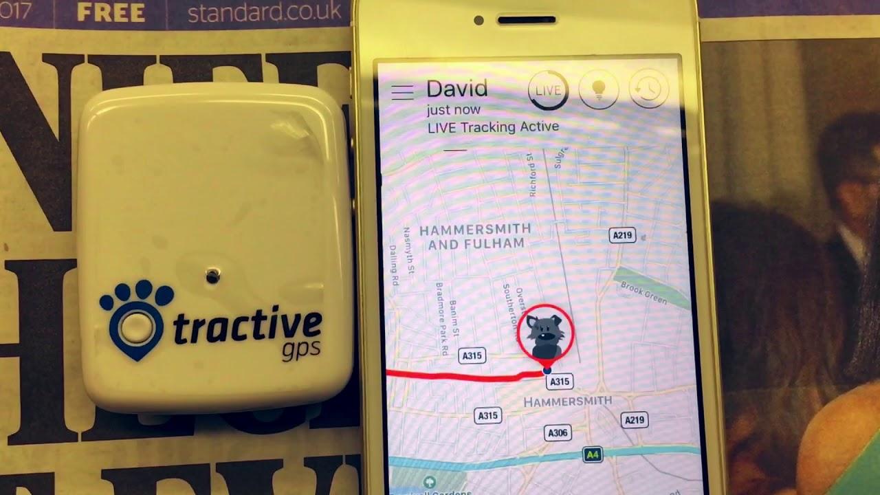 Tractive GPS: ecco la linea di localizzatori per gli animali thumbnail