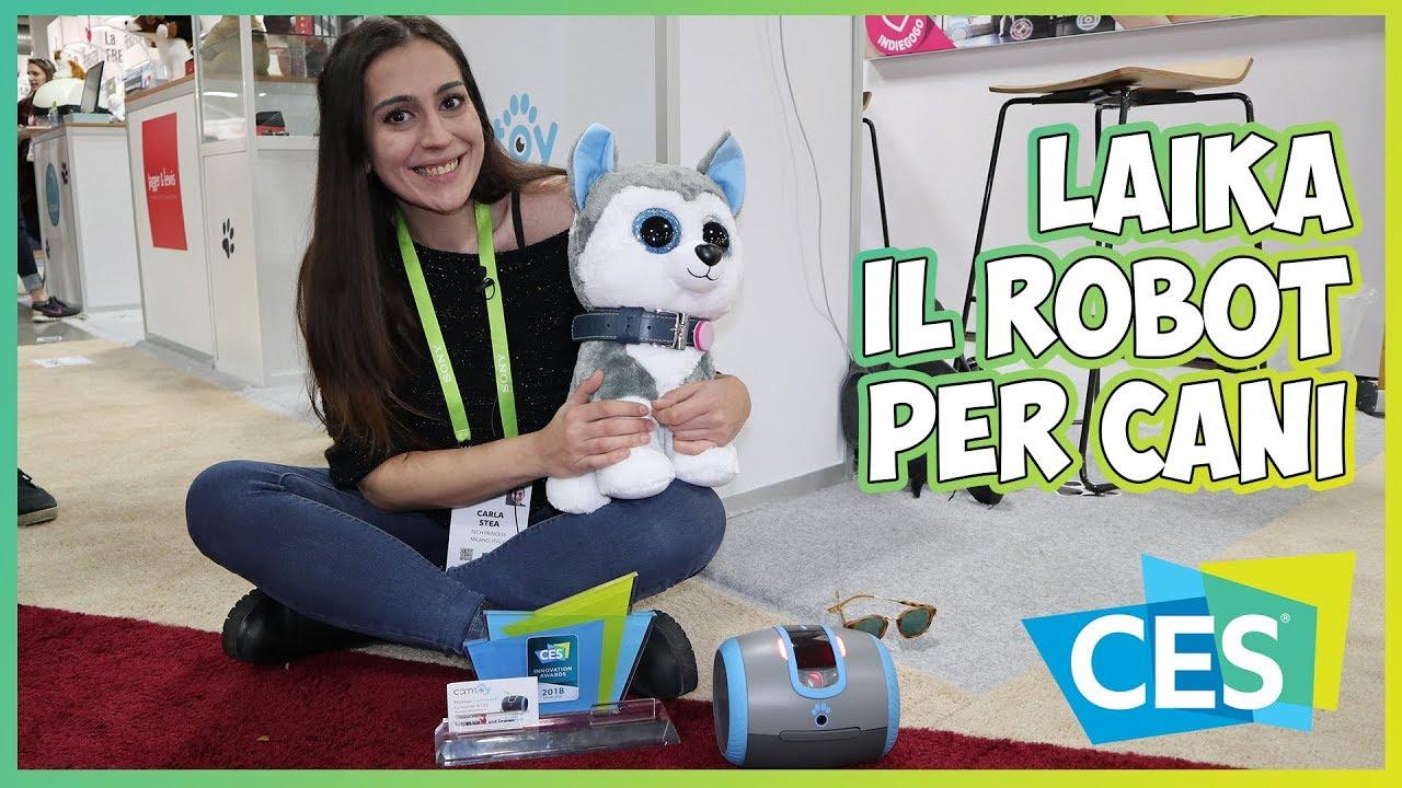 [CES 2018] Laïka, il robot per il controllo a distanza degli animali domestici thumbnail