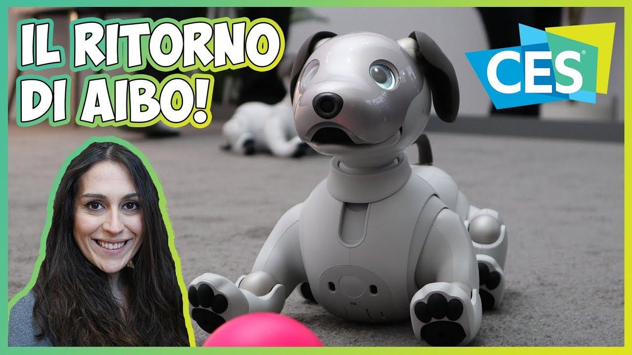[CES 2018] Sony Aibo è il cane robot dotato di Intelligenza Artificiale thumbnail