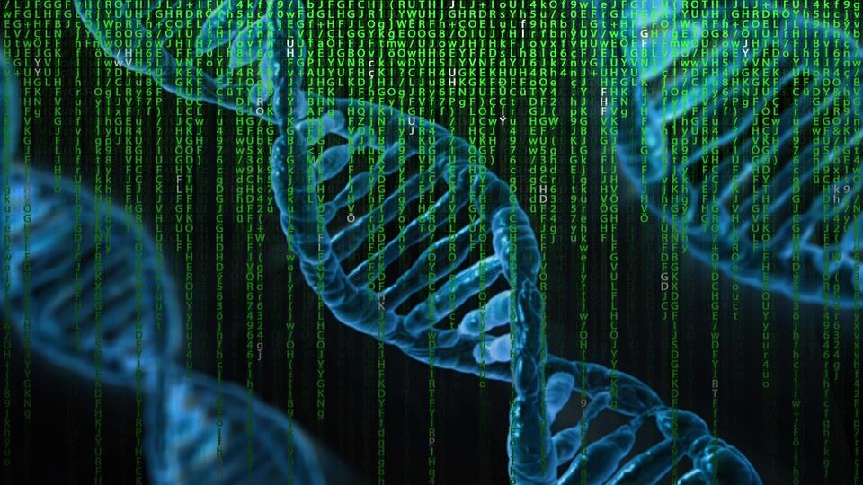 Algoritmi a 6 bit ricavati da DNA sintetico, la rivoluzione dei computer thumbnail