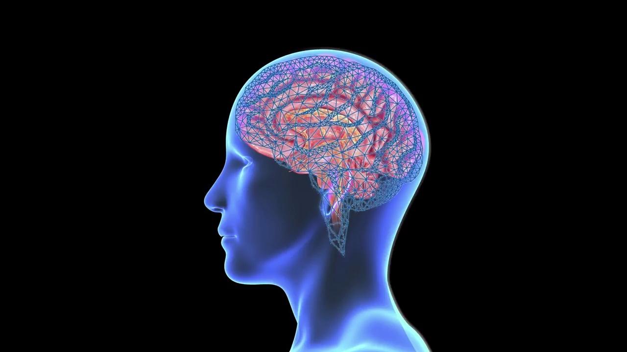 Neuralink al lavoro su una tecnologia capace di agire sul cervello thumbnail