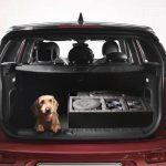 kit viaggio cani