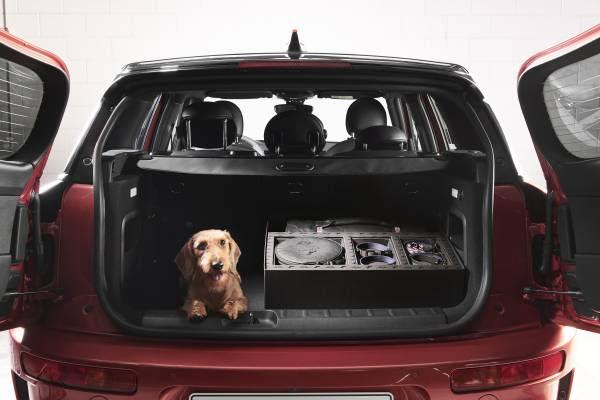 MINI e Poldo Dog Couture lanciano un esclusivo kit da viaggio per cani thumbnail