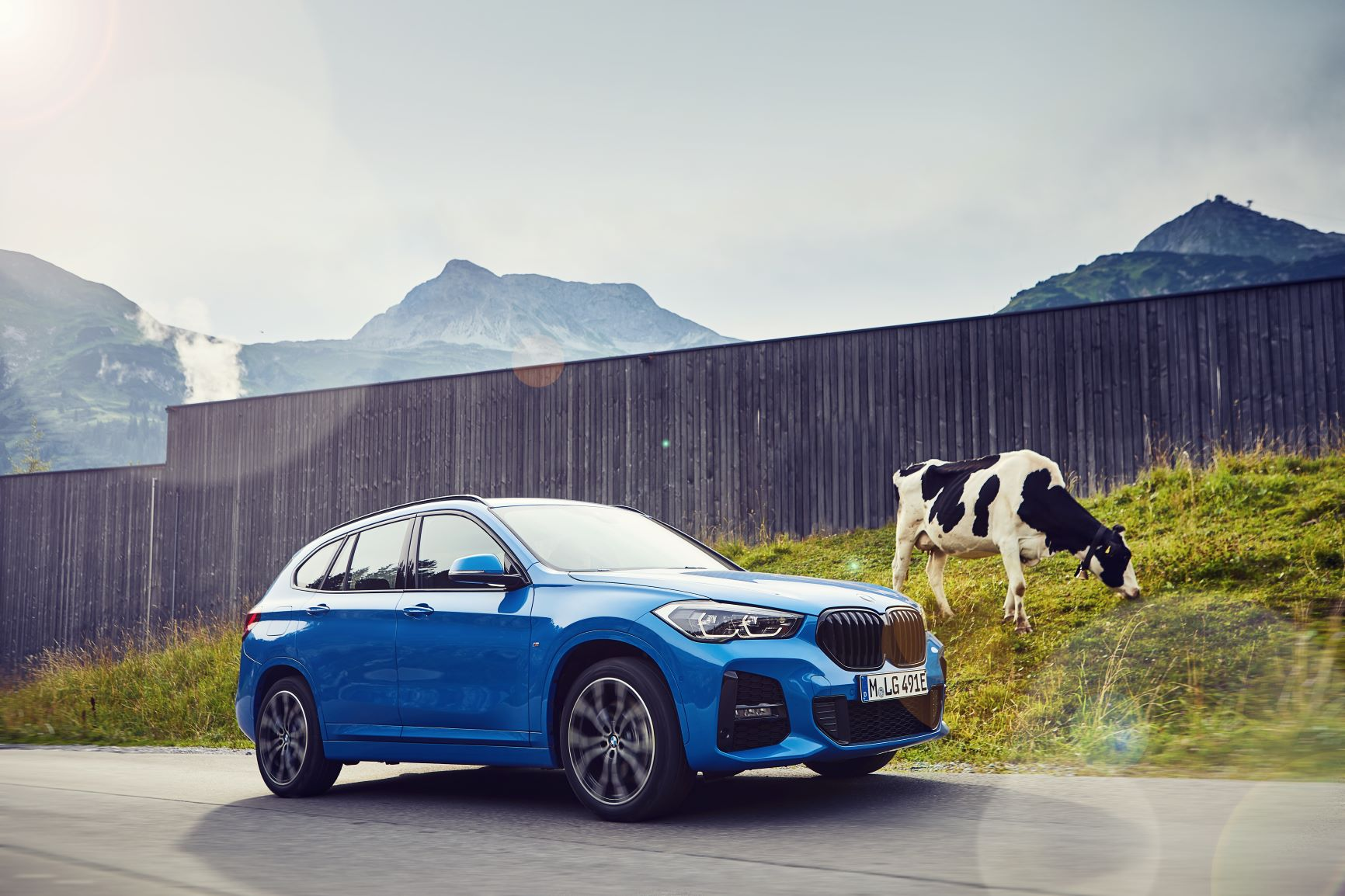 BMW X1 xDrive25e con mucca