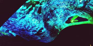 LG OLED Wave