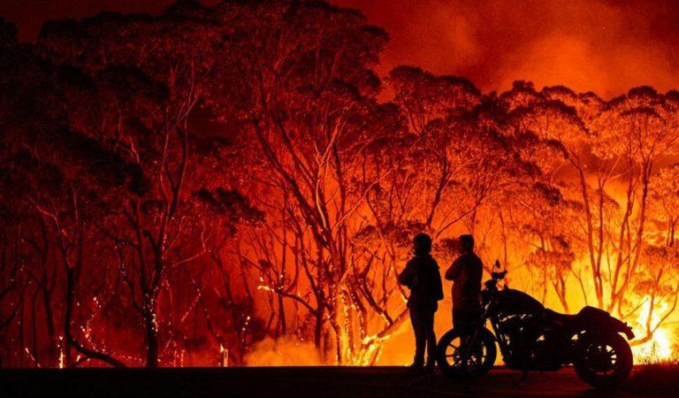 Revolut, Croce Rossa e WWF uniti per dare supporto durante l'emergenza incendi in Australia