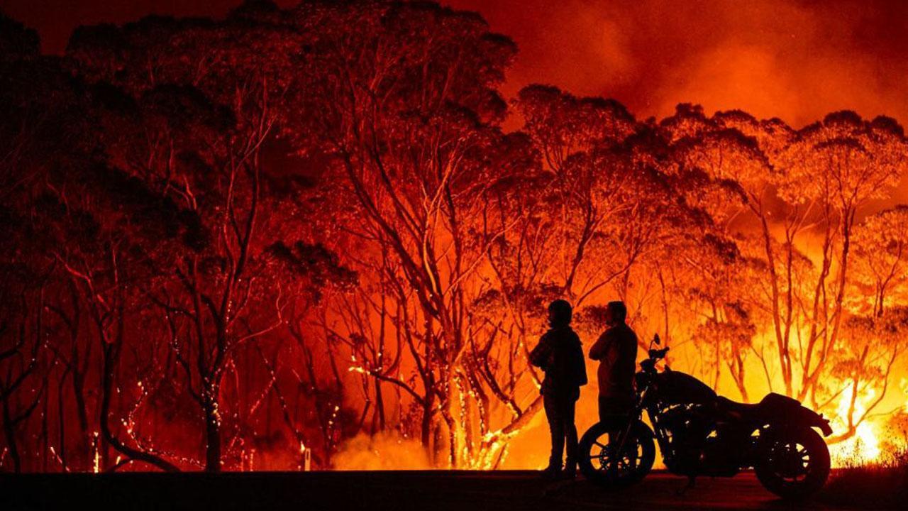 Revolut, Croce Rossa e WWF uniti per dare supporto durante l'emergenza incendi in Australia thumbnail