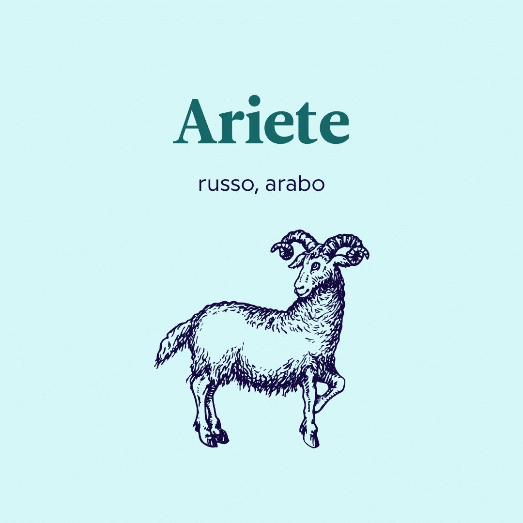 lingue da imparare secondo il segno zodiacale ariete