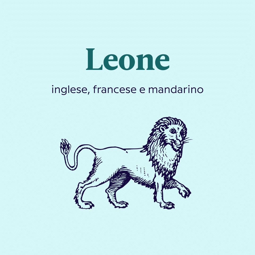 lingue da imparare secondo il segno zodiacale leone