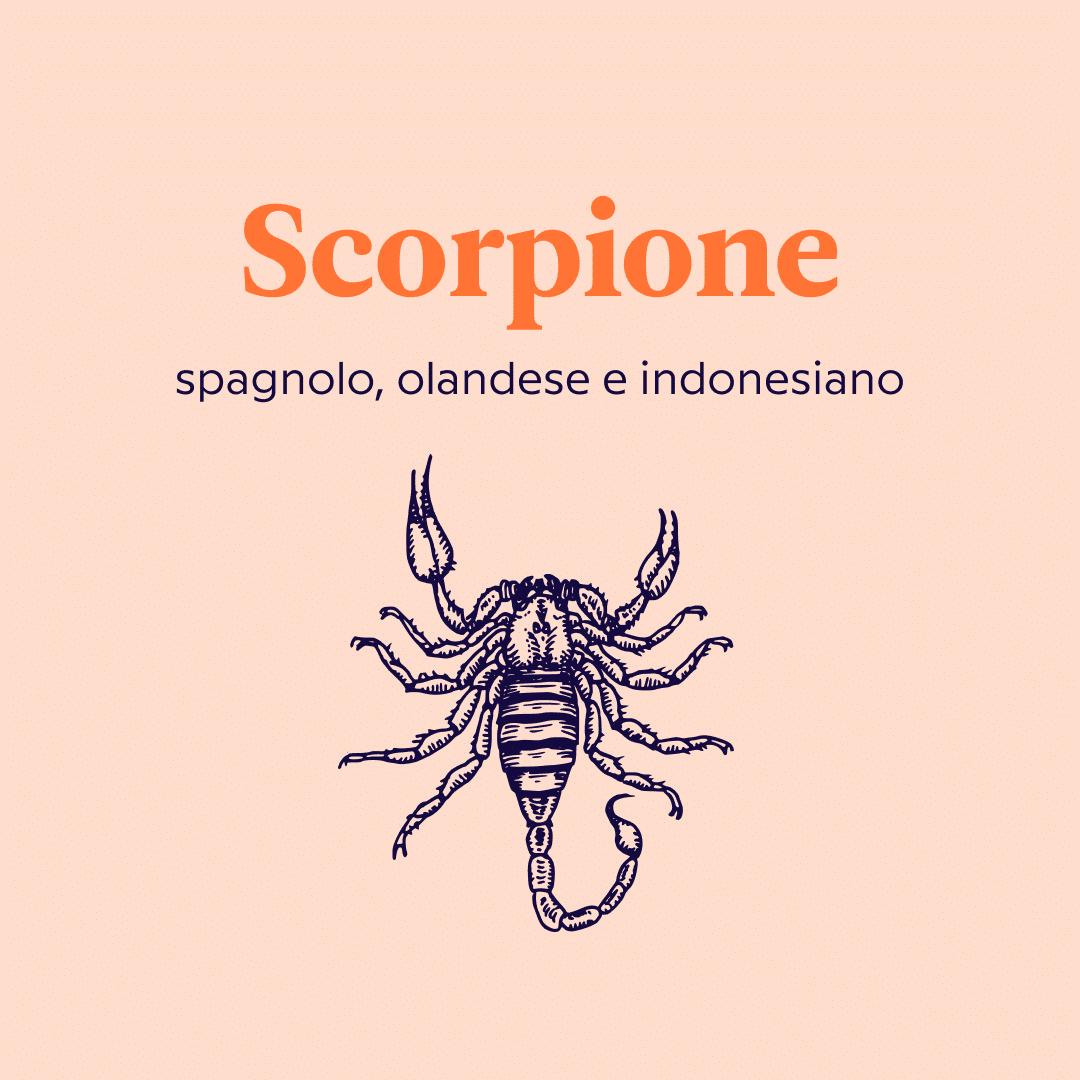 lingue da imparare secondo il segno zodiacale scorpione