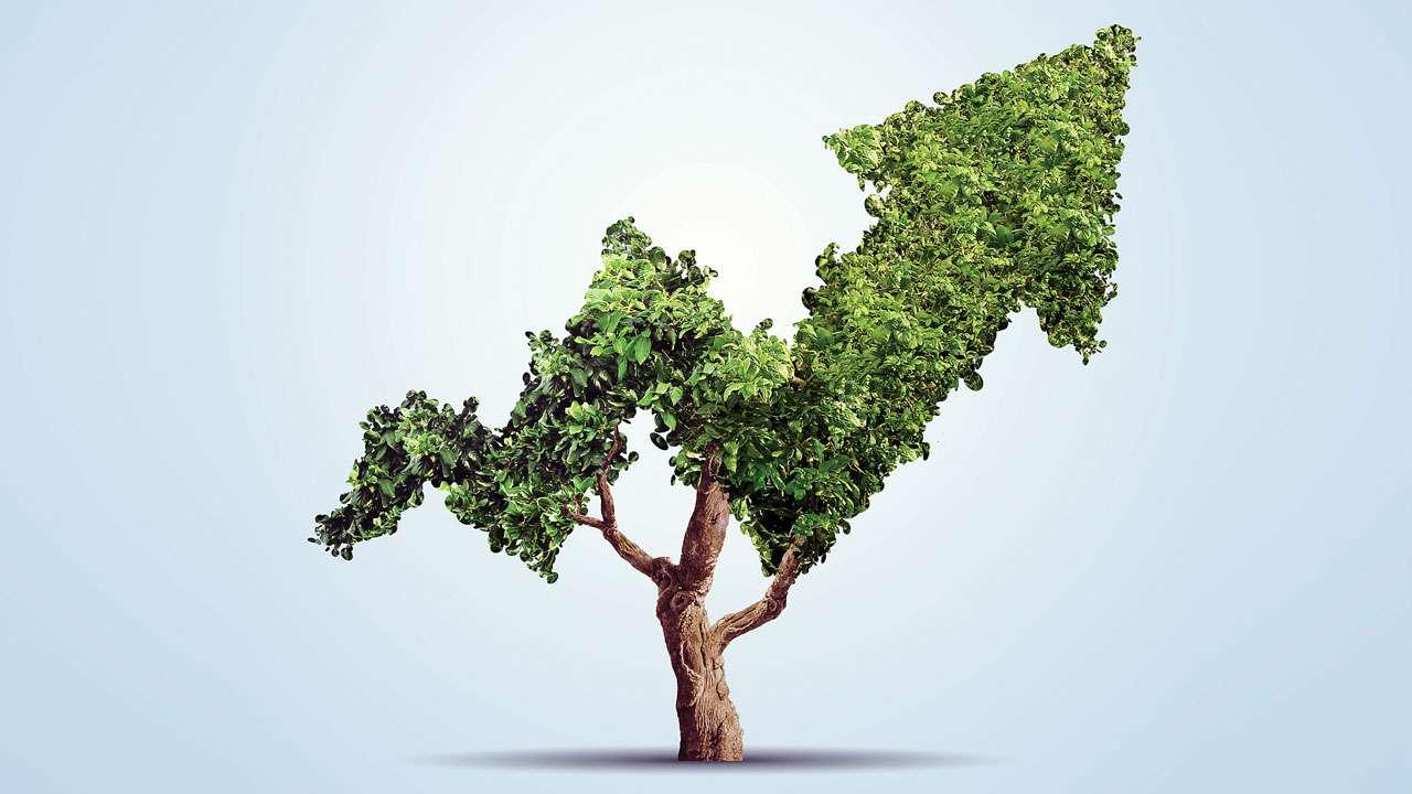 The Green Evolution Vaillant: quanto siamo green in Italia? thumbnail