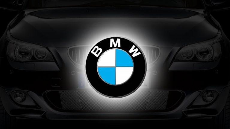 BMW: Reversing Assistant