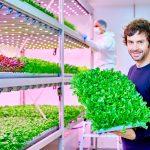 Signify-LED-Planet-Farms-Tech-Princess