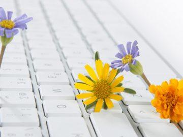 primavera online
