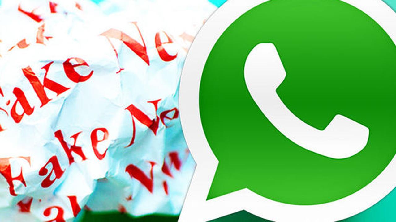 WhatsApp aggiunge la funzione di ricerca sul web per combattere la disinformazione thumbnail