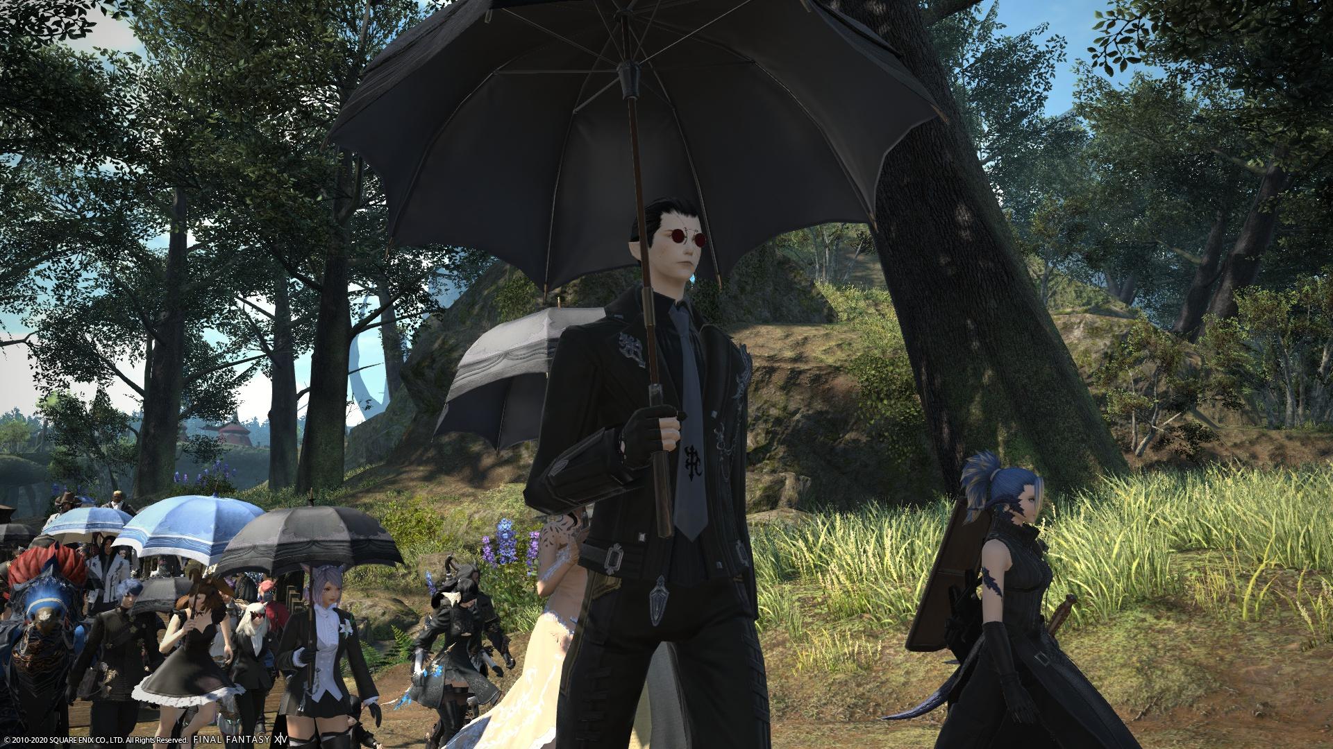Si trovano sul server di Final Fantasy per dire addio all'amico thumbnail