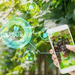 Giardino smart i migliori dispositivi