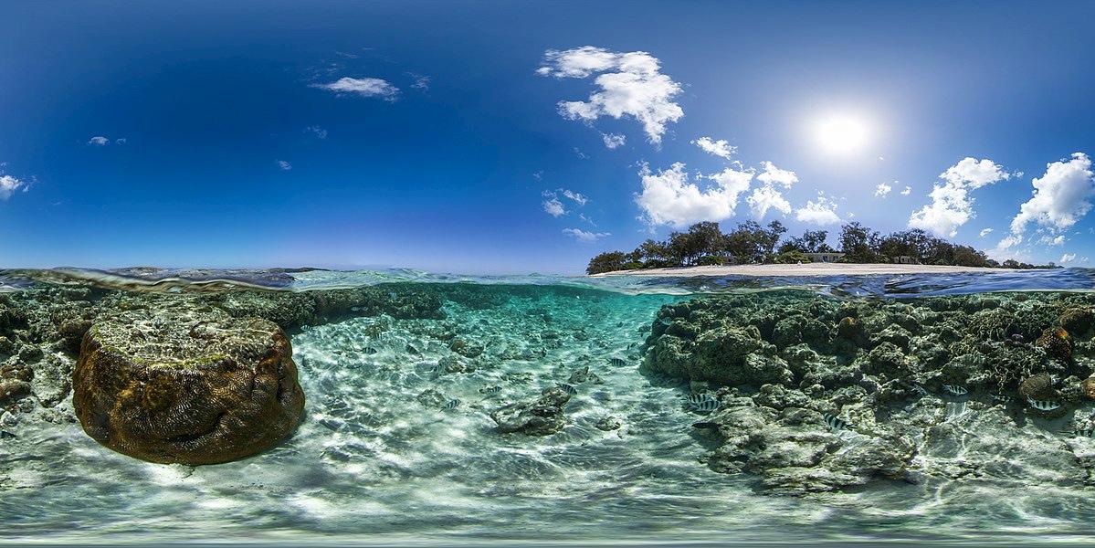Intel monitora la salute della barriera corallina con l'AI thumbnail