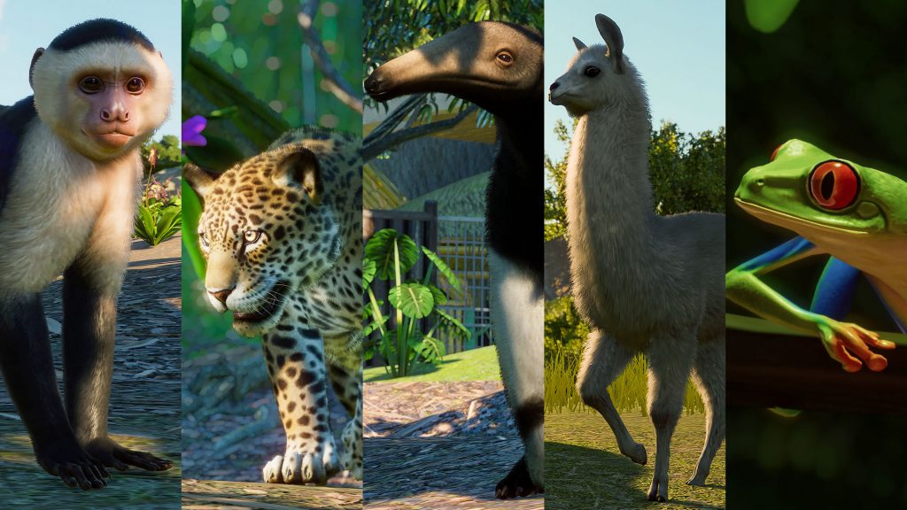 Planet Zoo: South America Pack recensione giaguaro