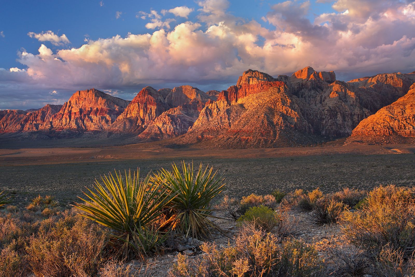 MINI Electric Red Rock Canyon