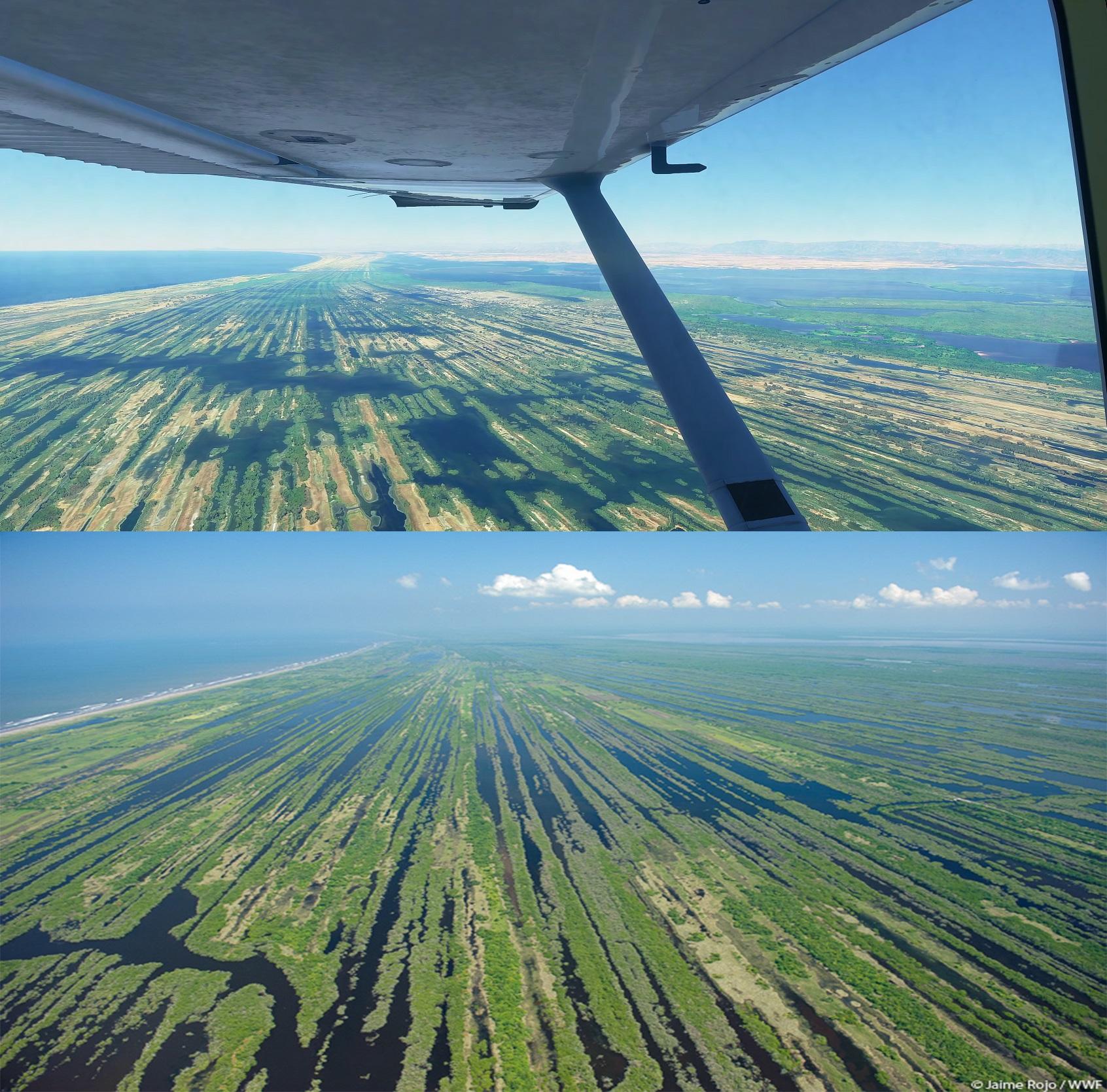 Microsoft Flight Simulator 2020 confronto marismas nacionales messico