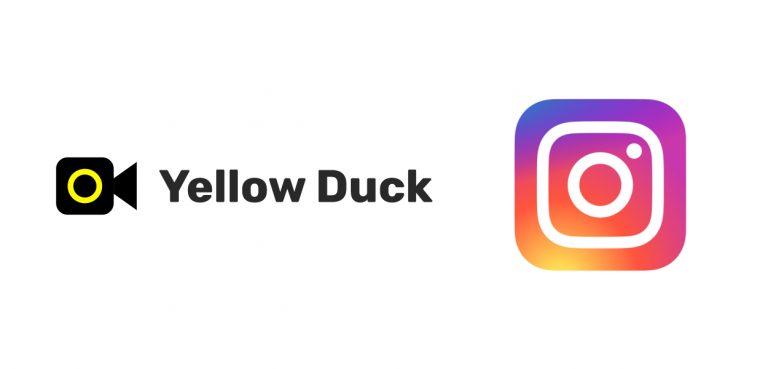 Yewllo Duck dirette Instagram PC copertina