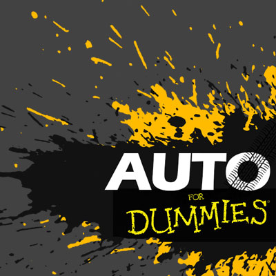 Auto for Dummies