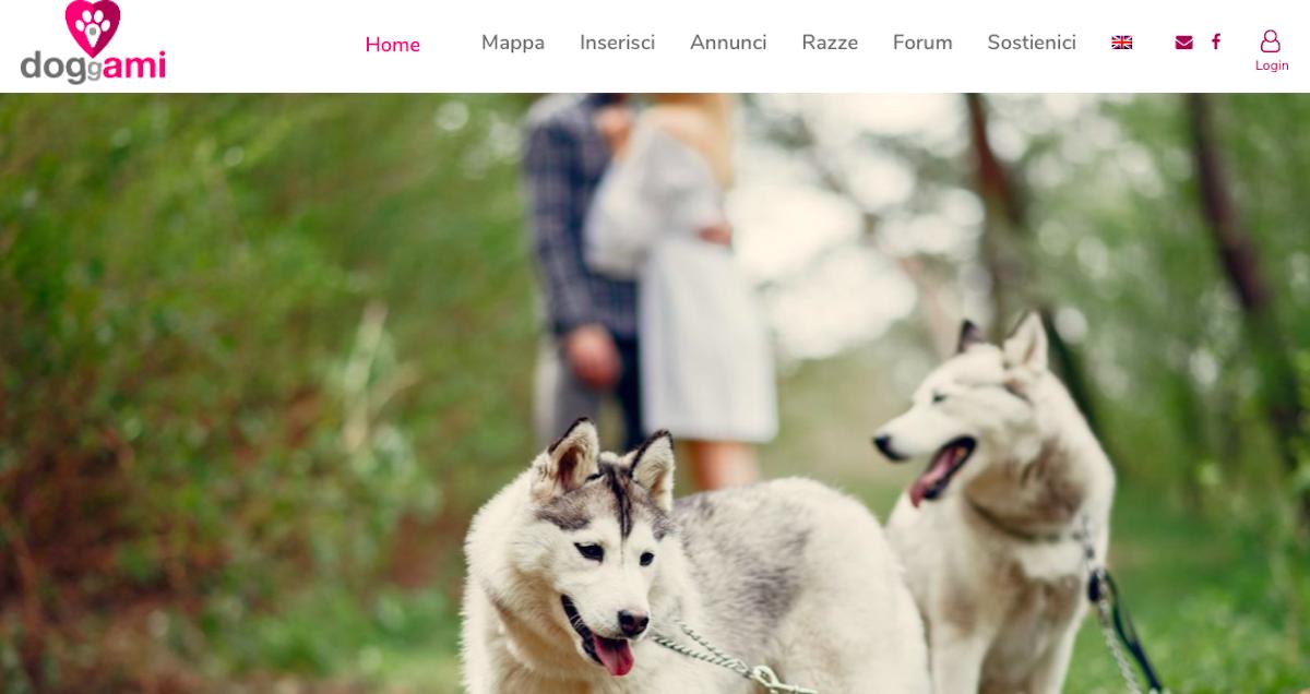 Doggami, arriva in rete il nuovo incredibile Tinder per cani thumbnail