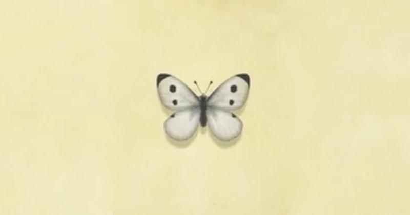 Farfalla Comune animal crossing new horizons