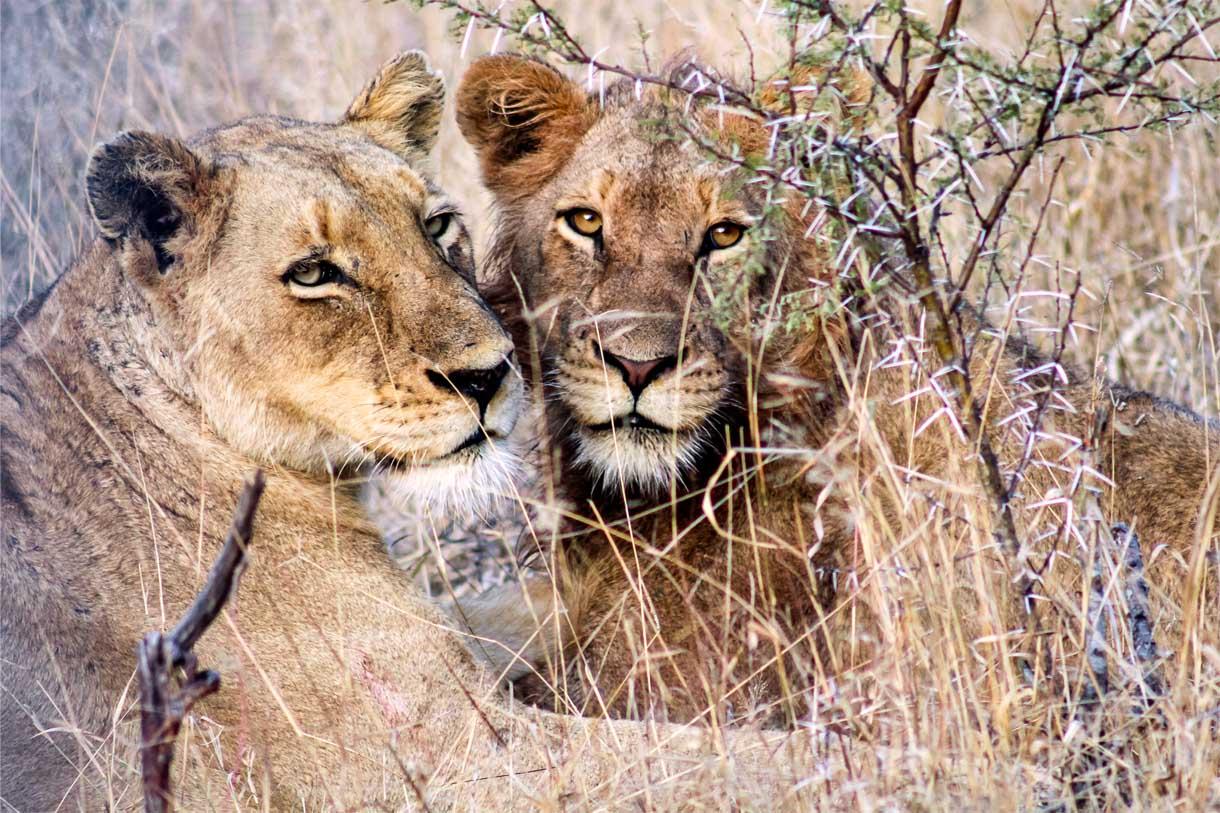 canon progetto sud africa fotografia Joia Mcunu