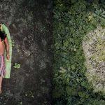 concorso fotografico sony world photography awards