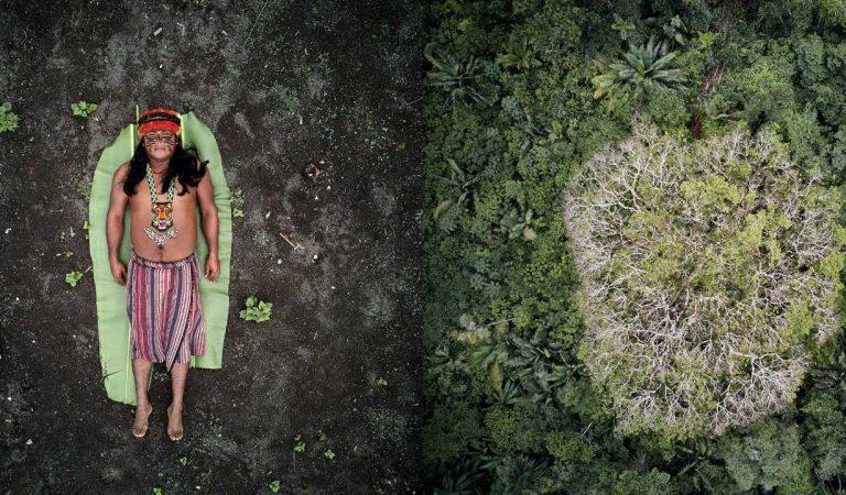 SWPA: i vincitori del prestigioso concorso fotografico internazionale