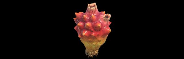 Ananas di mare Animal Crossing creature marine