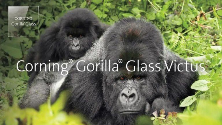 Gorilla Glass Victus