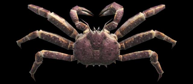 Granchio gigante Animal Crossing creature marine