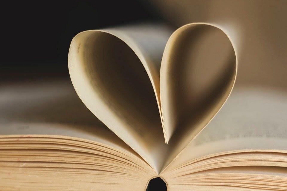 Bookabook registra un aumento nei pre-ordine nel primo semestre thumbnail