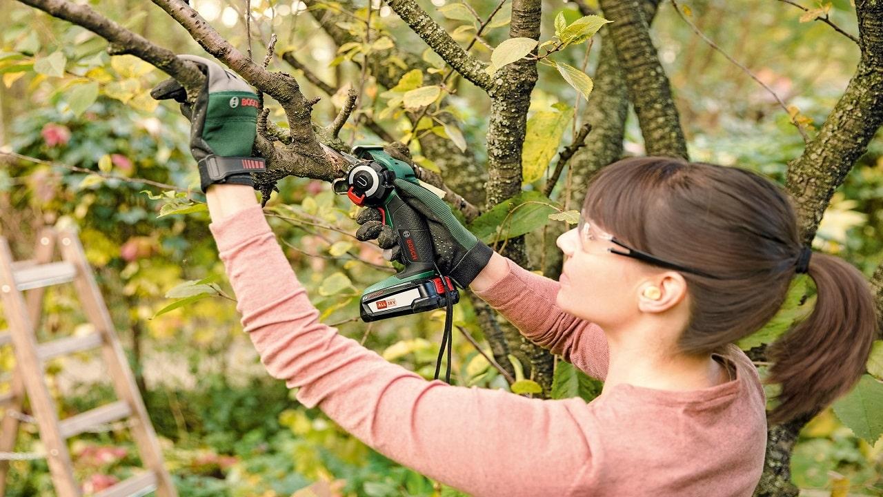 Bosch Power Tools ha aumentato il proprio fatturato thumbnail