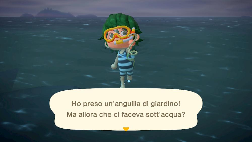 creature marine Animal Crossing cattura