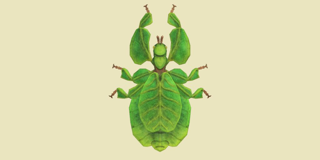 insetto foglia animal crossing new horizons