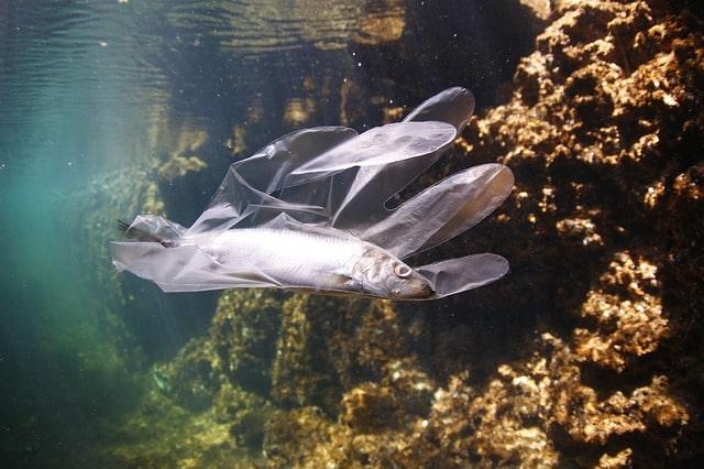 Onde di plastica: i rifiuti del lockdown galleggiano in mare thumbnail