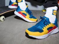 scarpe lidl copertina