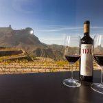 isole canarie vino