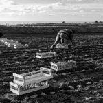 potato-photographer-of-the-year-Tech-Princess