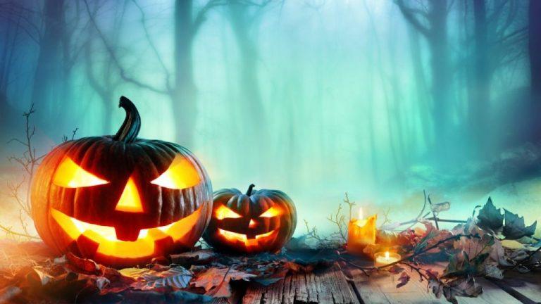 Zoomarine halloween