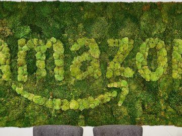 amazon eco