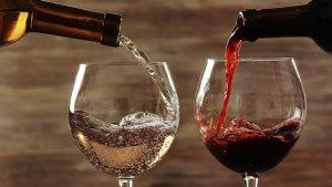cantinette vino e altra tech