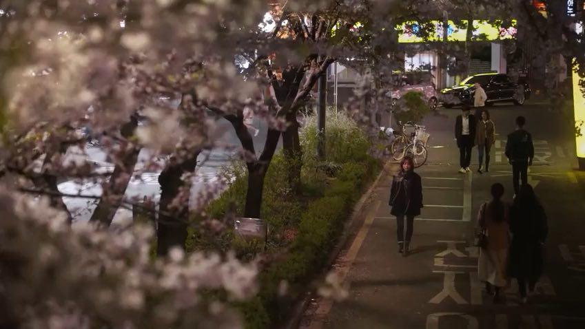 Spring-Night-Tech-princess