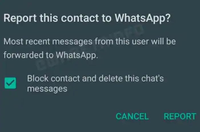 WhatsApp segnalazione utenti
